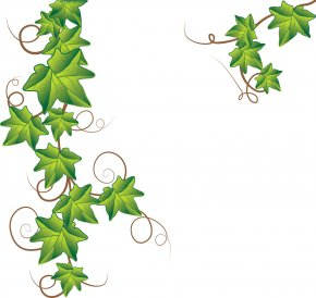 Free Vine Cliparts - Drawing Royalty-free Clip Art PNG