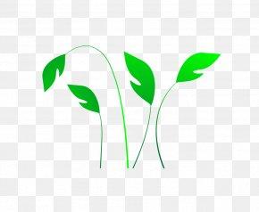 Leaf - Logo Font PNG