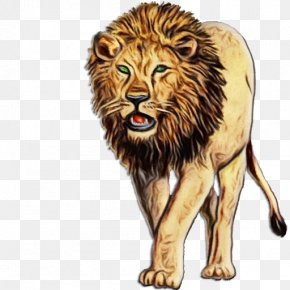 Terrestrial Animal Masai Lion - Lion Wildlife Big Cats Animal Figure Roar PNG