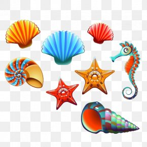 Hippocampus - Vector Graphics Seashell Stock Photography Clip Art Illustration PNG