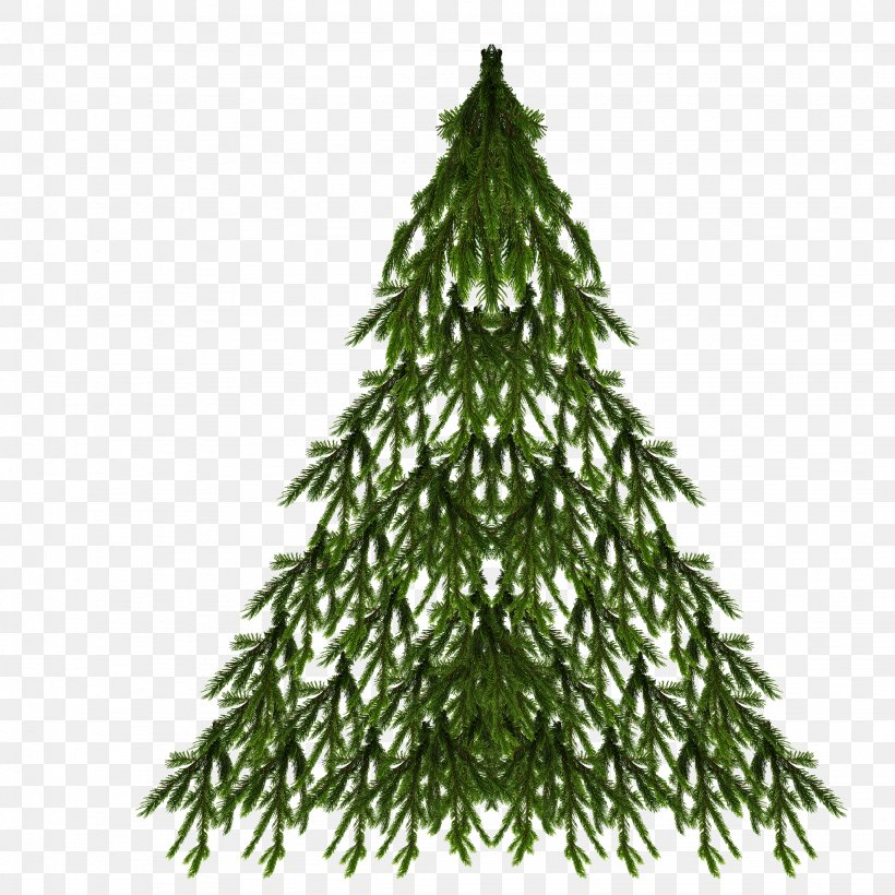 Spruce Christmas Tree New Year Tree Christmas Day, PNG, 2048x2048px, Spruce, Branch, Christmas Day, Christmas Decoration, Christmas Ornament Download Free