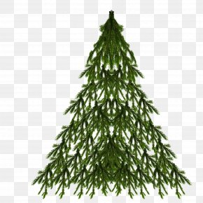 Christmas Tree - Spruce Christmas Tree New Year Tree Christmas Day PNG