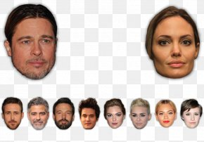 Dr Shape - Physical Attractiveness Facial Symmetry Face Averageness Golden Ratio PNG