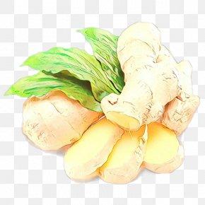 Herb Root Vegetable - Food Vegetable Ginger Ingredient Plant PNG