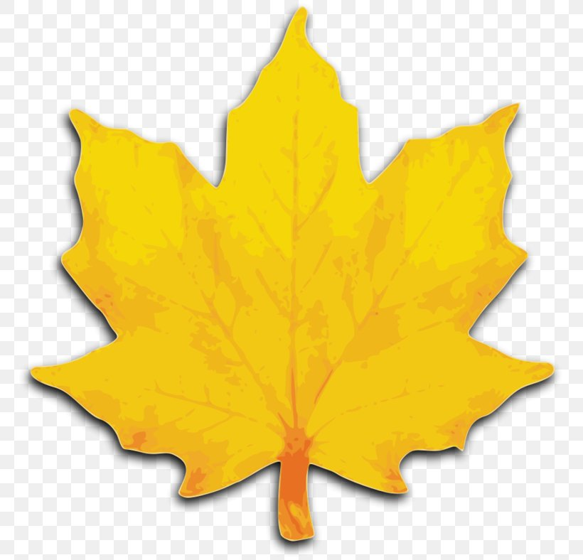 Maple Leaf Clip Art - Royalty Free - GoGraph