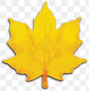 Brush Stroke Clipart - Maple Leaf Sugar Maple Clip Art PNG