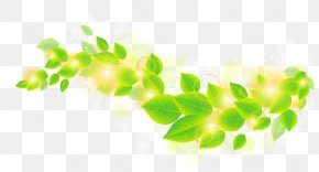 Green Leaf Background - Leaf Green Clip Art PNG