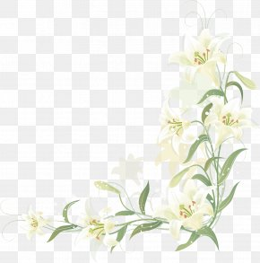 Hand-painted Lily Border PNG