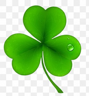 Clover PNG - Ireland Shamrock Saint Patrick's Day Irish People Clip Art PNG