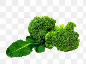 Broccoli - Broccoli Slaw Vegetable PNG