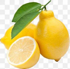 Lemon - Lemon Key Lime Fruit PNG
