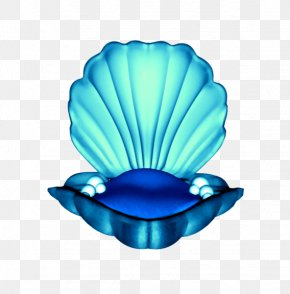 Heros - Mollusc Shell Drawing Great Scallop Coloring Book Blue PNG