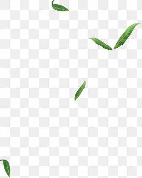 Leaf - Leaf Logo Plant Stem Line Font PNG