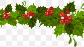 Transparent Christmas Long Mistletoe Decoration Clipart - Christmas Decoration Christmas Ornament Clip Art PNG