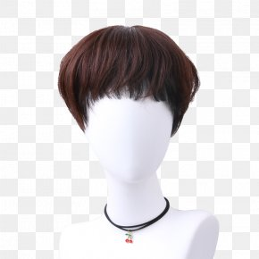 Hairdo Clip In Bangs Images Hairdo Clip In Bangs Transparent Png Free Download