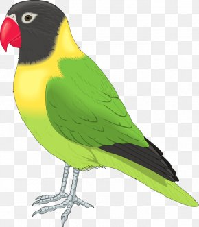 Flying Birds Clipart - Bird Clip Art PNG