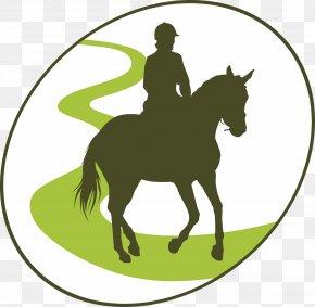 Horse - Horse Equestrian Endurance Riding Clip Art PNG