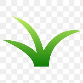 Grasses Plant Stem Leaf Flower Font PNG