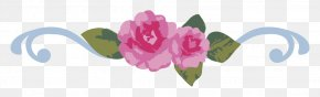 Floral Decoration Dividing Line - Floral Design Beach Rose Flower PNG
