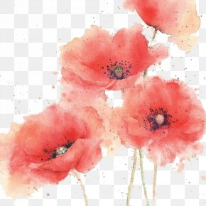 Watercolor Flowers - Watercolor Painting Painter PNG