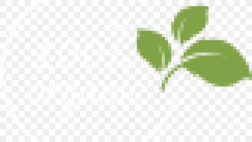 Green Leaf Plant Stem Font, PNG, 870x490px, Green, Branch, Grass, Herb, Leaf Download Free