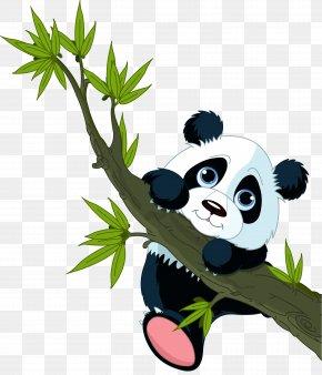 Panda - Giant Panda Sticker Wall Decal Red Panda PNG