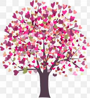 Fir-tree - Heart Valentine's Day Stock Photography PNG