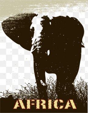 Elephant Vector Material - Giraffe Lion Elephant Wildlife PNG