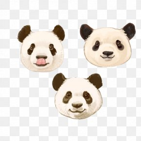 Panda Painted Different Expressions Stock Image - Giant Panda Bear PNG