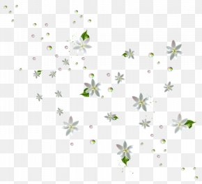 Wildflower Branch - Floral Spring Flowers PNG