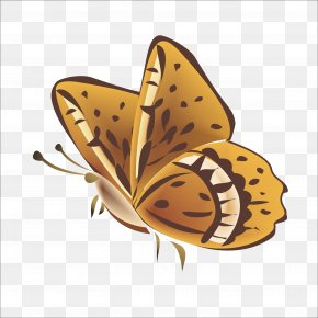 Butterfly - Monarch Butterfly Nymphalidae Pattern PNG