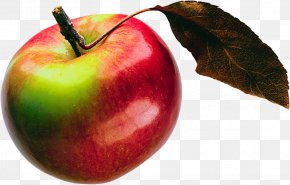 Red Apple - Accessory Fruit Still Life Photography Apple McIntosh Laboratory Wallpaper PNG