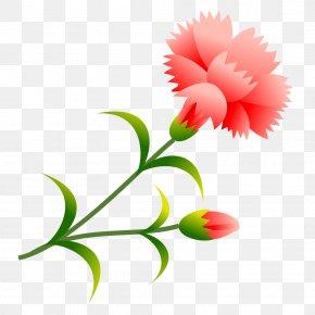 Cgi - Carnation School Summer Vacation Flower Plant Stem PNG