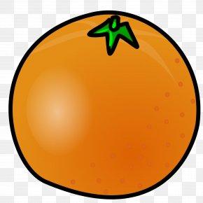 Orange Cliparts - Orange Free Content Clip Art PNG