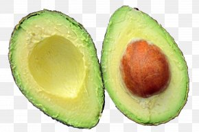 Avocado - Low-carbohydrate Diet Burrito Food PNG