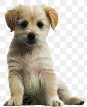 Cute Puppy Clipart Image - Labrador Retriever Puppy Clip Art PNG