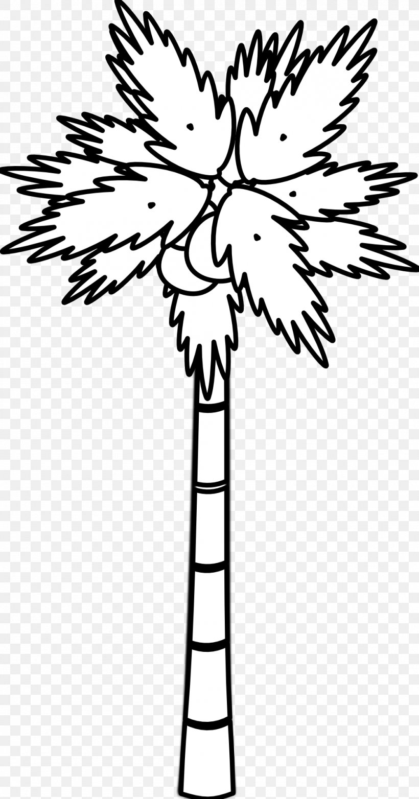 Arecaceae Black And White Tree Clip Art, PNG, 999x1906px, Arecaceae, Black And White, Branch, Coconut, Flora Download Free