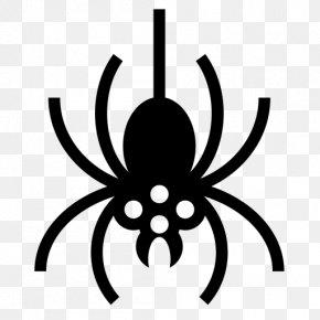 Spider - Spider Web Windows 8 Clip Art PNG