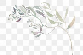 Herbaceous Plant Line Art - White Leaf Plant Flower Drawing PNG