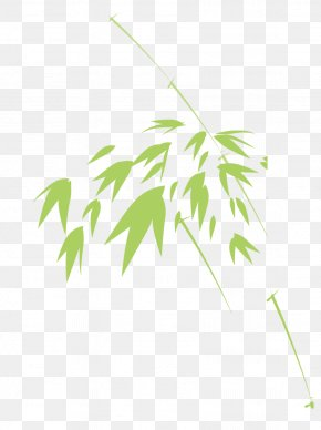 Green Bamboo Leaves - Bamboo Green Leaf PNG