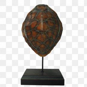European Decorative Pattern - Pond Turtles Wood Tortoise /m/083vt Lighting PNG