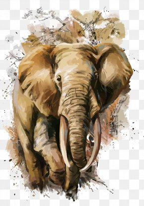 Vector Elephant - African Elephant T-shirt Watercolor Painting PNG