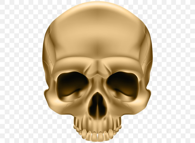Skull And Crossbones Decal Sticker Human Skull Symbolism, PNG, 472x600px, Skull And Crossbones, Bone, Bumper Sticker, Decal, Face Download Free