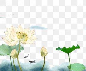 Chinese Style Ink Lotus Painting - China Ink Wash Painting Nelumbo Nucifera Gongbi PNG