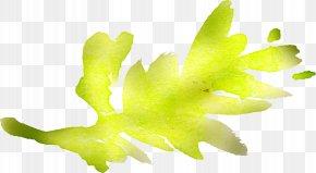 Watercolor Flowers - Leaf Plant Stem Desktop Wallpaper Yellow PNG