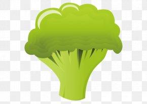 Vector Broccoli - Broccoli Cauliflower Food Illustration PNG