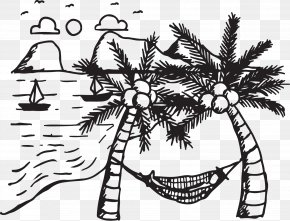 Coconut Tree Hammock - Coconut Tree Arecaceae Drawing PNG