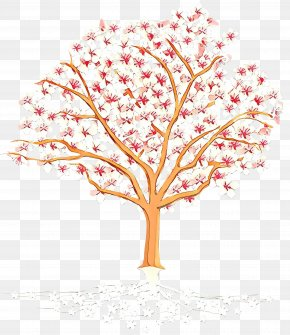 Flower Plant Stem - Cherry Blossom Tree Drawing PNG