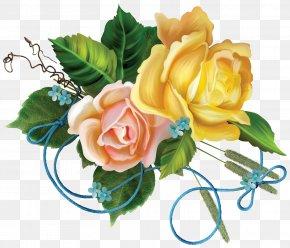Flower - Flower Garden Roses Floral Design Clip Art PNG