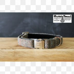 Dog Collar - Dog Collar Belt Webbing PNG